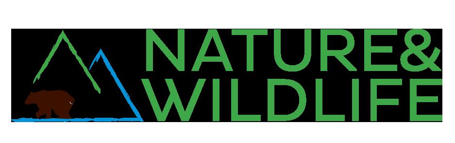 Pripreme za završnu konferenciju Nature&Wildlife